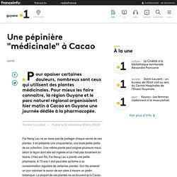 """Une pépinière """"médicinale"""" à Cacao - Guyane la 1ère"""