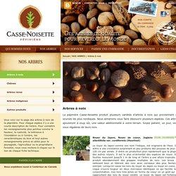 Pépinière Casse-Noisette - Arbres à noix