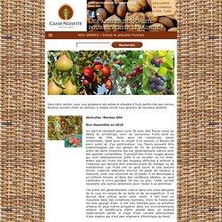 Pépinière Casse-Noisette - Arbres et arbustes fruitiers
