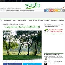 La pépinière-parc des Arbres de Marcillé (49)