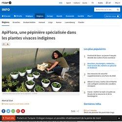 ApiFlora, une pépinière spécialisée dans les plantes vivaces indigènes