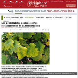 LA VIGNE 16/12/14 Flavescence dorée Les pépiniéristes pestent contre les aberrations de l'administration