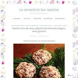 Rocher noix de coco, pépites de chocolat (vegan, sans gluten) – Le renard et les raisins
