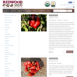 Peppers – Redwood Organic Seeds