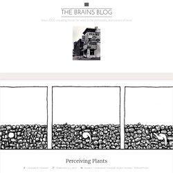 Perceiving Plants – The Brains Blog