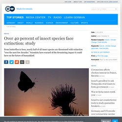 Over 40 percent of insect species face extinction: study