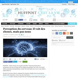Perception du cerveau: il voit des choses, mais pas nous