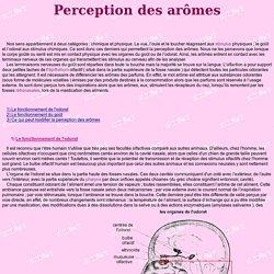 Perception des arômes