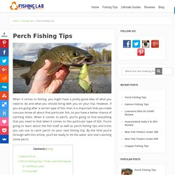 Perch Fishing Tips – How to Catch Perch, Things to Bring on Your Perch Fishing Trip