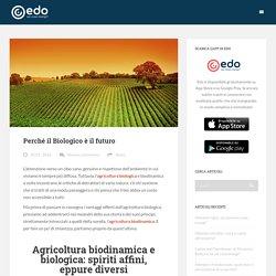 Perché il Biologico è il futuro - Edo Blog