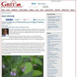 Grow Comfrey for a Perennial Source of Organic Fertilizer - Hay Fever Blog