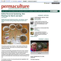 Edible Perennial Gardening: New Plantings for March and April
