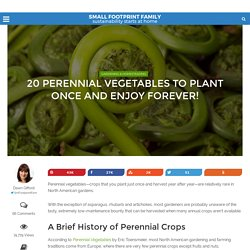 Perennial Vegetables: Years of Bounty