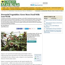 Perennial Vegetables: Grow More Food With Less Work