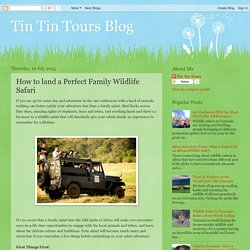 How to land a perfect Family Wildlife Safari
