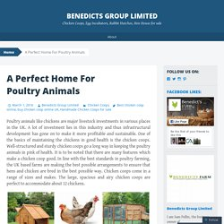 A Perfect Home For Poultry Animals
