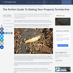 The Perfect Guide To Making Your Property Termite-free