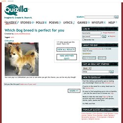 Quiz Result: Which Dog breed is perfect for you? | Get More Quizzes at Quizilla