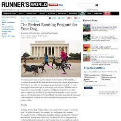 The Perfect Running Program for Your Dog