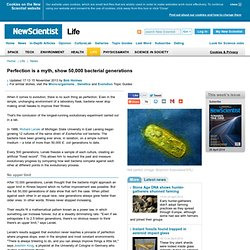 Perfection is a myth, show 50,000 bacterial generations - life - 15 November 2013