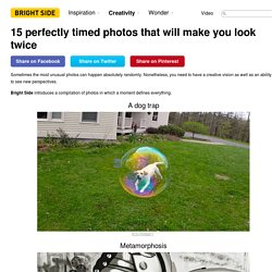 15 perfectly timed photos that will make you look twice