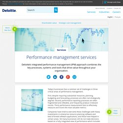 Perfomance management services