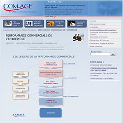 PERFORMANCE COMMERCIALE DE L'ENTREPRISE - Com-Ace Nantes Conseil Stratégie et Performance Commerciale