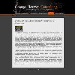 Evaluation de la performance commerciale de l'entreprise - Hermes-Consulting