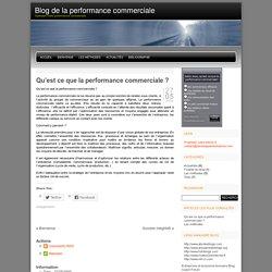Qu'est ce que la performance commerciale ?