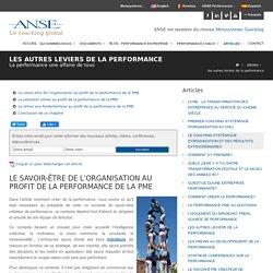LES AUTRES LEVIERS DE LA PERFORMANCE - Anse Performance en entreprise Coaching dirigeant individuel équipe commerciaux Montpellier Lyon Toulouse
