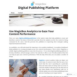 Use MagicBox Analytics to Gaze Your Content Performance
