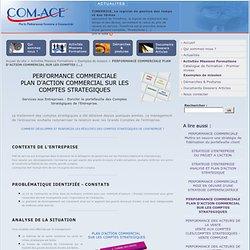 PERFORMANCE COMMERCIALE PLAN D'ACTION COMMERCIAL SUR LES COMPTES STRATEGIQUES - Com-Ace Nantes Conseil Stratégie et Performance Commerciale