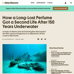 How a Long-Lost Perfume Got a Second Life After 150 Years Underwater