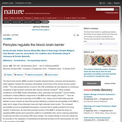 Pericytes regulate the blood–brain barrier