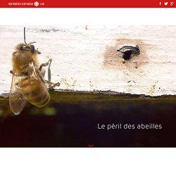 Le péril des abeilles
