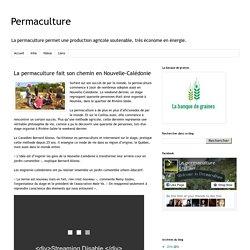 PERMACULTURE_CF - MARS 2015 - La permaculture fait son chemin en Nouvelle-Calédonie