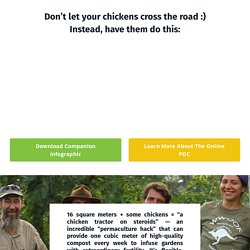 How to Make a Chicken Composting System