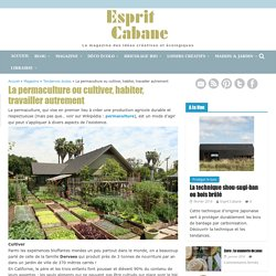 La permaculture ou cultiver, habiter, travailler autrement, Esprit Cabane, idees creatives et ecologiques
