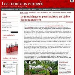 Le maraîchage en permaculture est viable économiquement