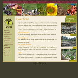 Permaculture and Erosion Control - Permaculture Artisans
