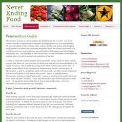 Permaculture Guilds - Never Ending Food