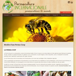 Permaculture Internationale