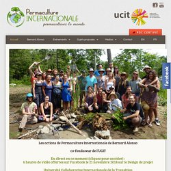 ACCUEIL - permaculture internationale
