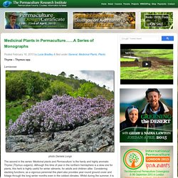 Medicinal Plants in Permaculture……A Series of Monographs - The Permaculture Research Institute