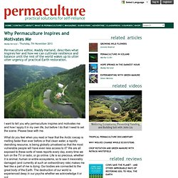 Why Permaculture Inspires and Motivates Me
