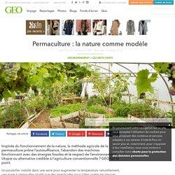 Permaculture : la nature comme modèle