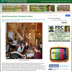 Social Permaculture: Principles in Action
