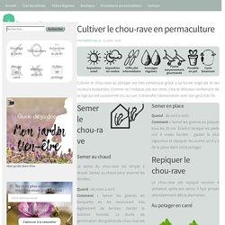 Cultiver le chou-rave en permaculture - Perpétuelle