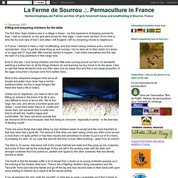 La Ferme de Sourrou .:. Permaculture in France: Killing and preparing chickens for the table