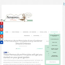 4 Permaculture Principles Every Gardener Should Embrace